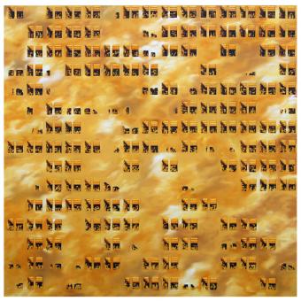 Ofillarts-Golden-Wall-2016